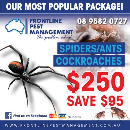 Pest Control Mandurah Baldivis Rockingham
