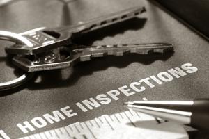 Termite Inspections Mandurah Baldivis Rockingham